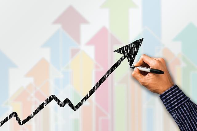 Business Architecture e centri di profitto